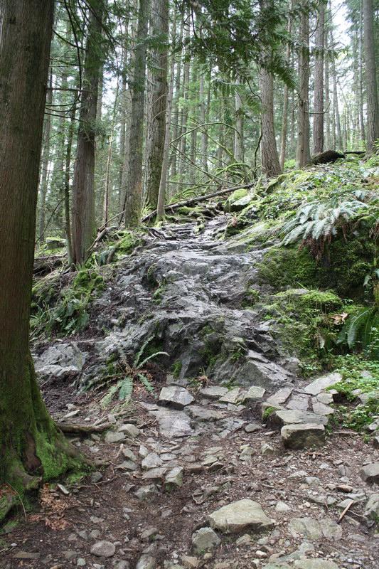 Empress-trail-Seymour
