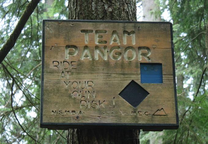 Seymour-Team-Pangor