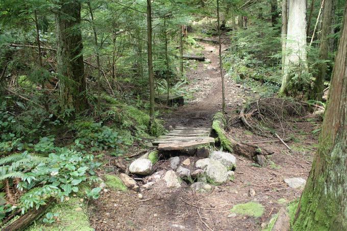 Seymour_BoogieMan_trail